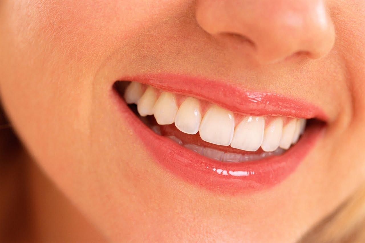 inidunia com apa saja yang perlu dilakukan untuk menjaga kesehatan gigi dan mulut berikut ini tips merawat agar tetap sehat indah